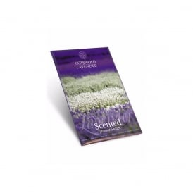 Lavender Drawer Sachet