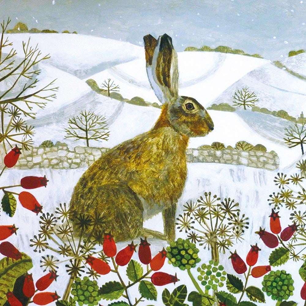 Museums and galleries hare in the snow pack of 5 charity christmas cards m4hsunfo