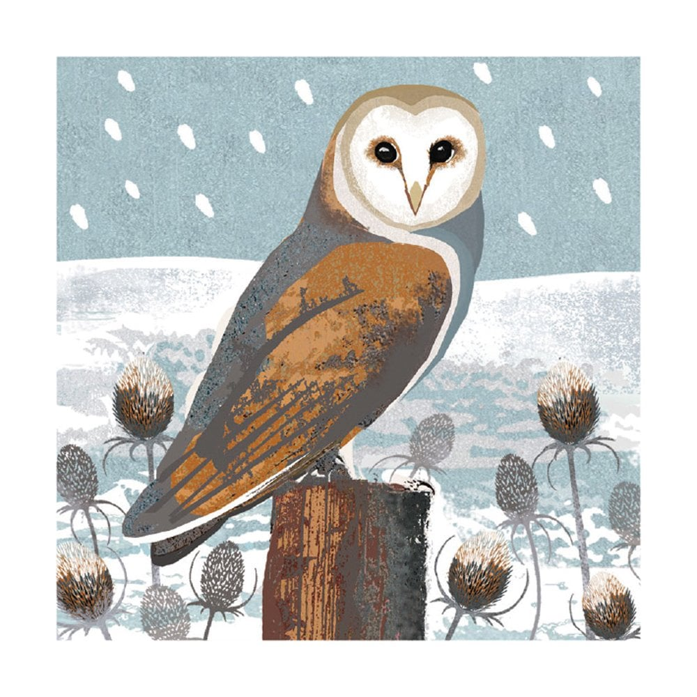 Museums and Galleries Owls and Teasels Pack of 8 Christmas Cards