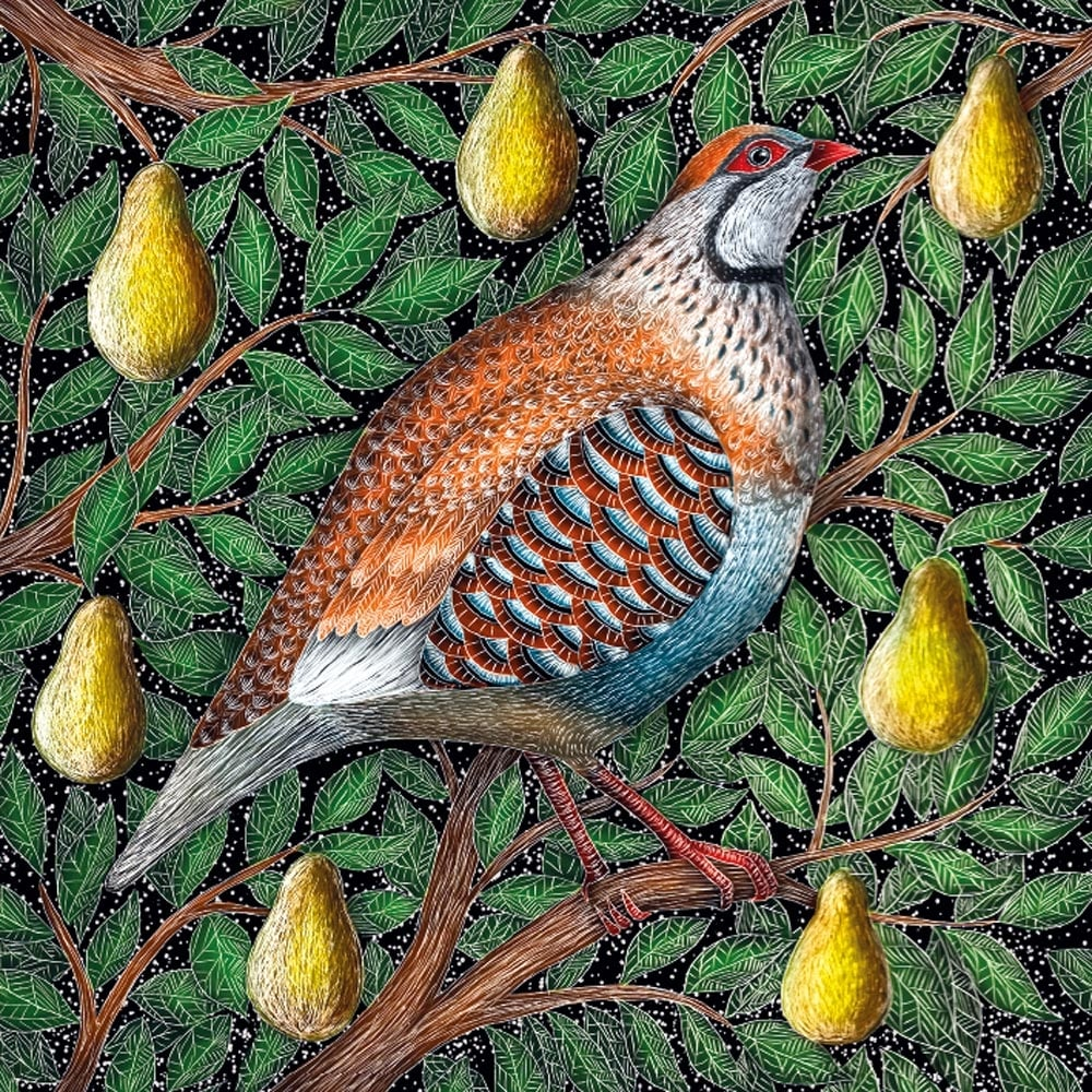 Museums and galleries partridge in a pear tree pack of 8 charity museums and galleries partridge in a pear tree pack of 8 charity christmas cards m4hsunfo