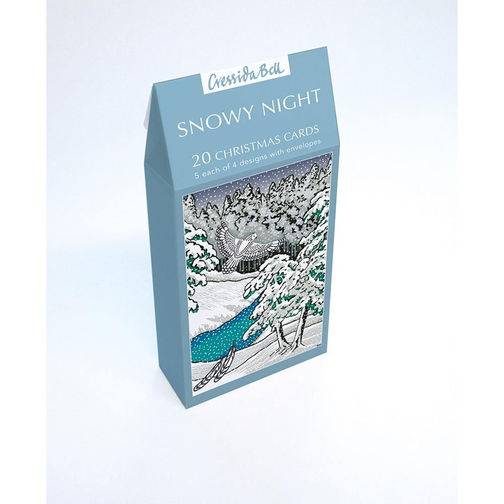 Museums and galleries snowy night pack of 20 christmas cards snowy night pack of 20 christmas cards m4hsunfo