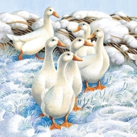 Museums and Galleries Winter Ducks Pack of 5 Charity Christmas Cards