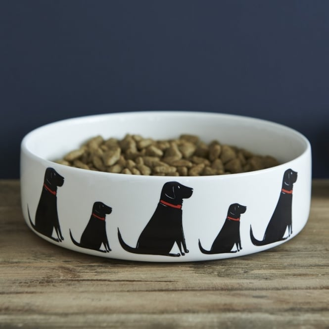 Sweet William Black Labrador Large Dog Bowl