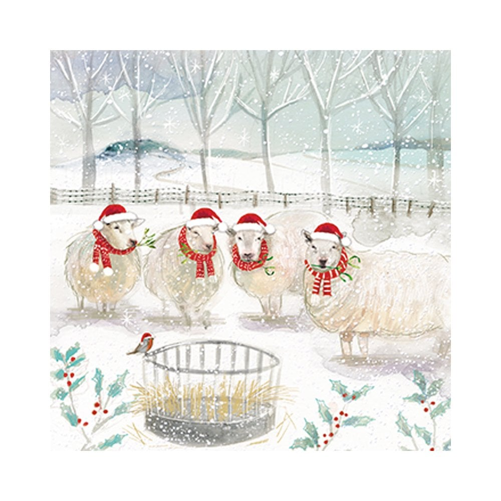 The Almanac Gallery Snowy Cow And Sheep Box Of 20